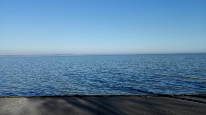 Решил срезать путь: спасатели вытащили из Таганрогского залива мужчину, провалившегося под лёд