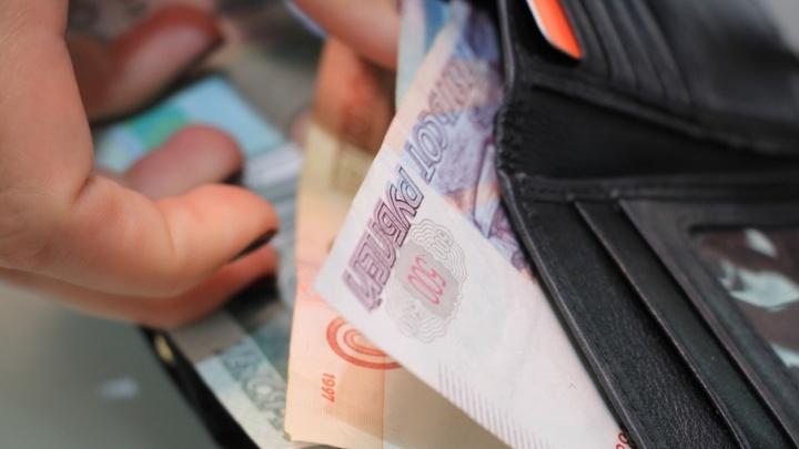 Житель Подмосковья за 1500 рублей стал гендиректором фирмы в Вилегодском районе