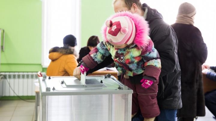 Предварительное голосование в Ярославскую областную думу: как отдать голос за кандидата через интернет