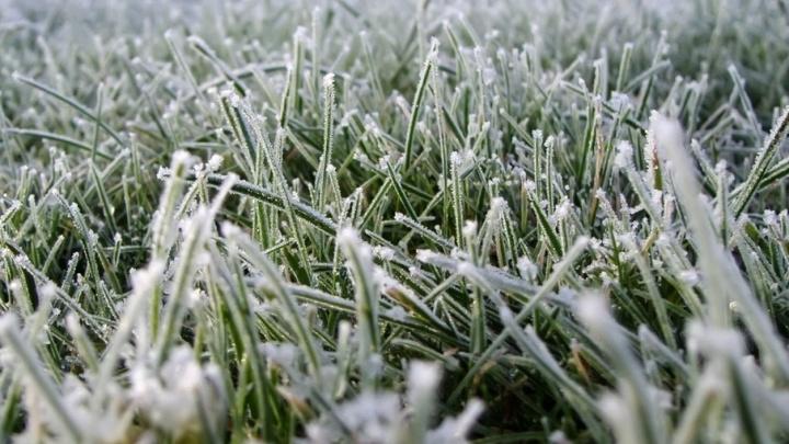 В Поморье ударят заморозки