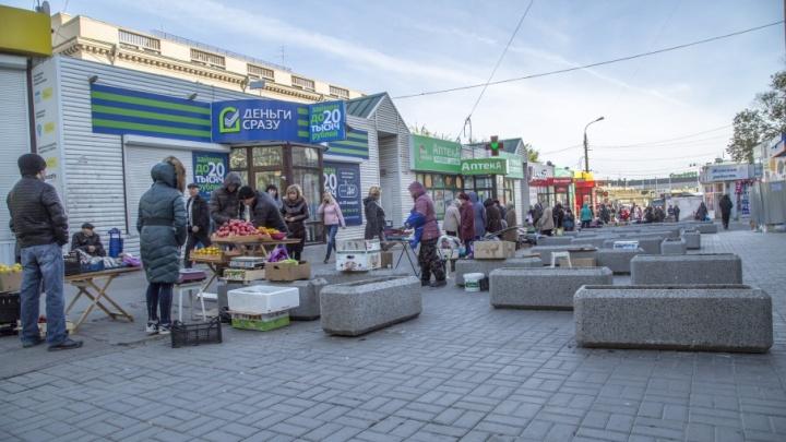 Волгоградские общественники встали на защиту охранных зон проспекта Ленина