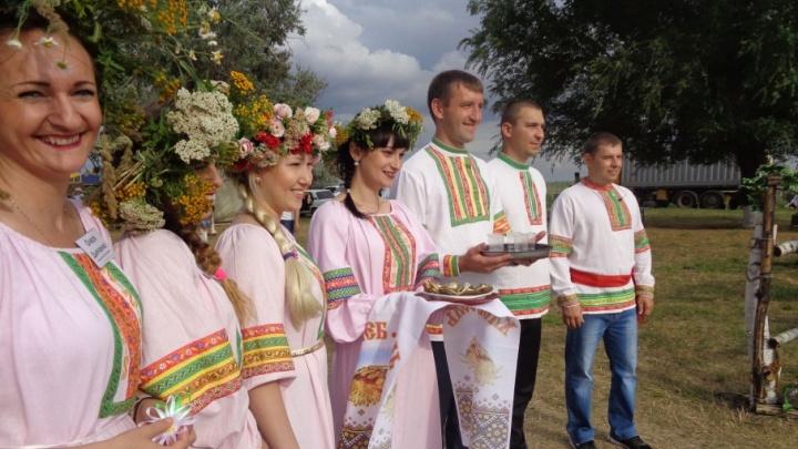 День дружбы народов Дона предлагают ввести депутаты