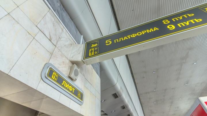 Из Самарской области за неделю депортировали 59 нелегалов