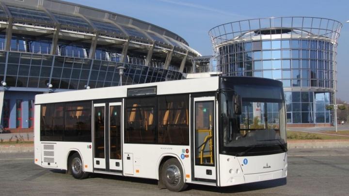 Современный автобус должен быть таким: дилер предложил Ростову новый городской транспорт