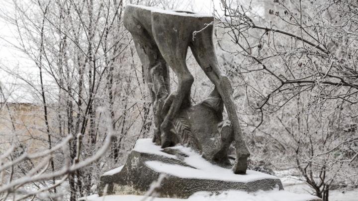 Трем районам Волгограда хотят добавить ёлок и романтики