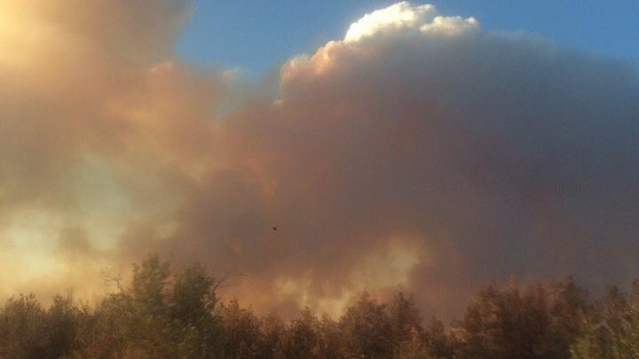 В Дубовском районе из-за пожаров перекрыли федеральную трассу