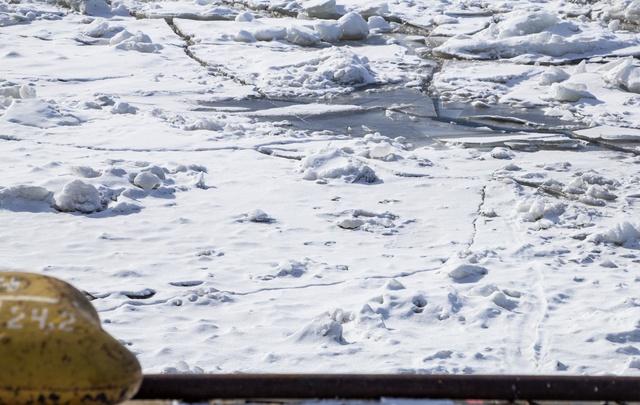 Северодвинец утонул в реке Кудьма вместе с велосипедом