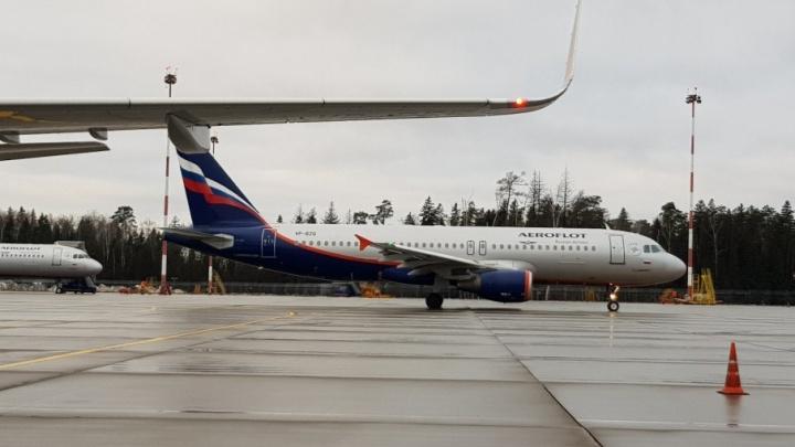 Из-за окутавшего Волгоград тумана задерживается рейс из Москвы