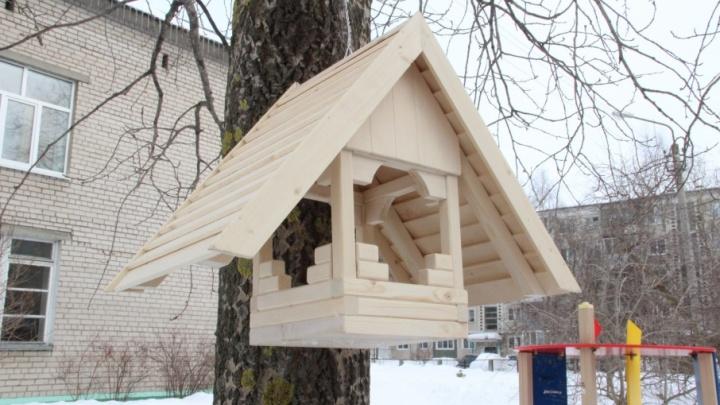 «Покормите птиц зимой»: нацпарк «Водлозерский» объявил о начале акции помощи пернатым