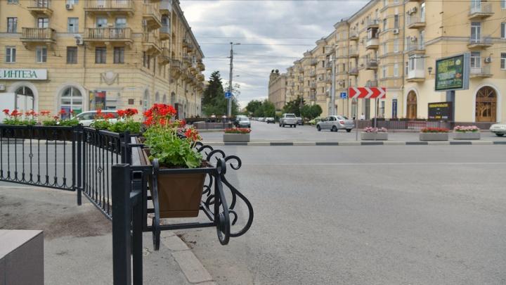 В центре Волгограда на оживленном перекрестке появилась новая клумба
