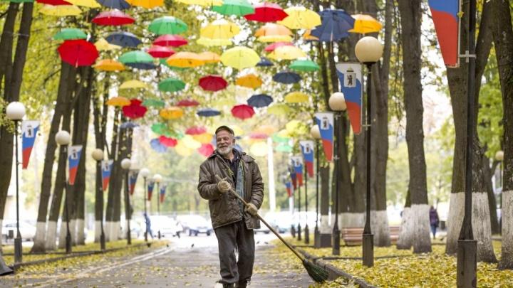 Красота по-октябрьски: в Ярославль пришла роскошная осень