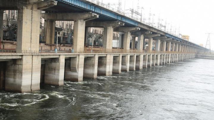 Зимний паводок в Волгограде: природная аномалия или попытка заработать на мошке к ЧМ-2018