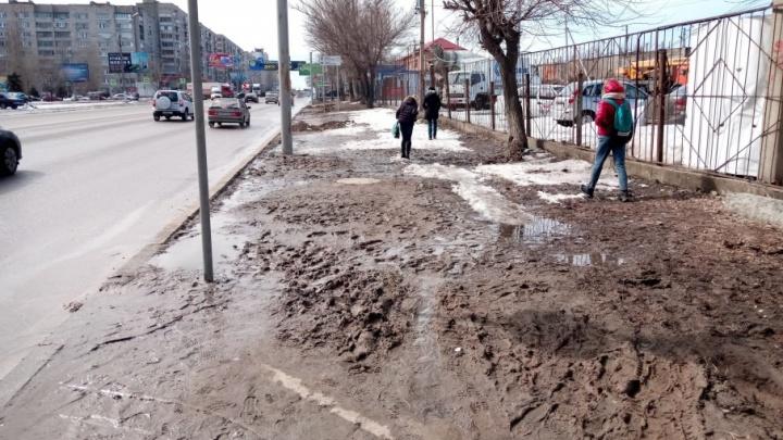 Горе-парковщики выселили волгоградские автобусы поближе к грязи