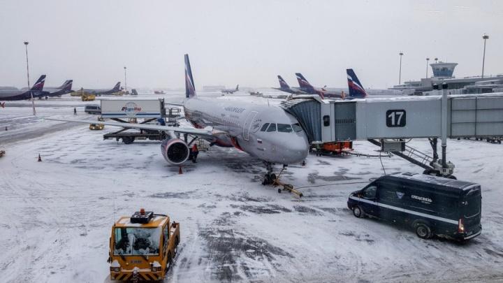 Самолет из Москвы, сделав над Волгоградом несколько кругов, вернулся в Шереметьево