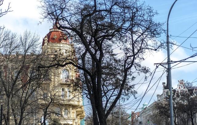 Экскурсоводы Ростова готовятся к приезду туристов