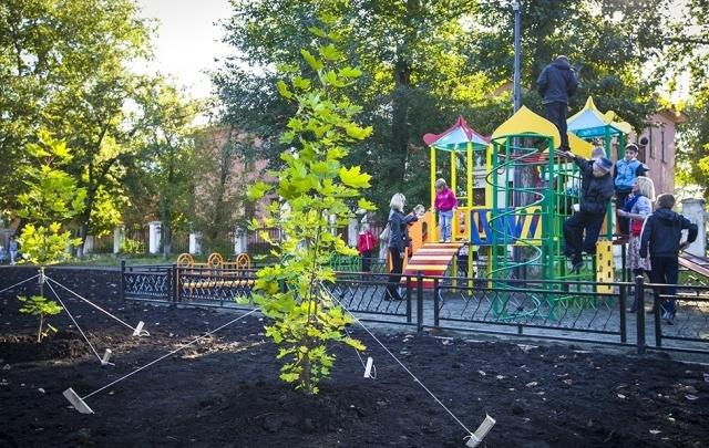 К ноябрю в Челябинске высадят более 3,5 тысячи деревьев