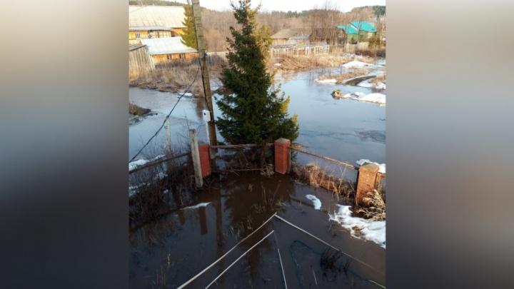 «Вода бежит по дорогам и огородам»: в деревнях Пермского района затопило дома