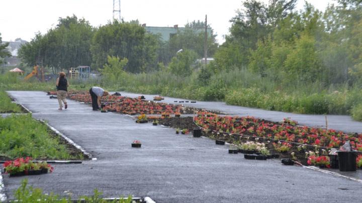 На пустыре в Челябинске вырастет «Мамин парк»