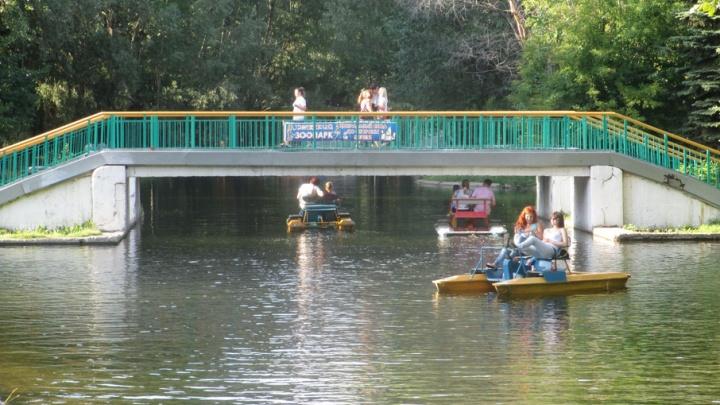 В Самаре в парке Гагарина отметят День мороженого