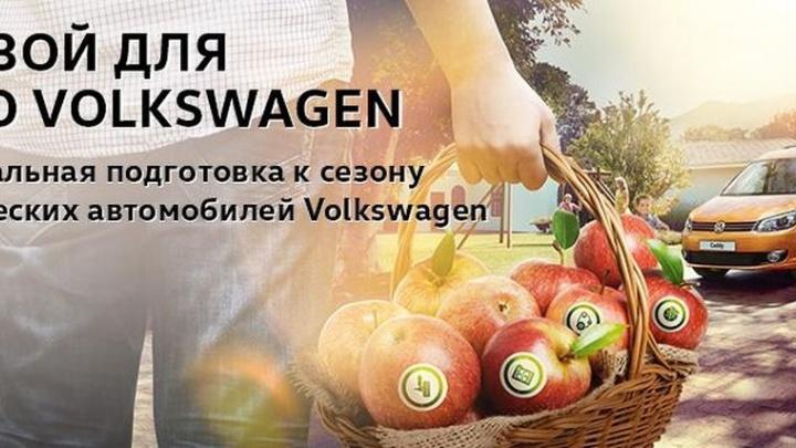 Профессиональная подготовка автомобиля к летнему сезону от «Волга-Раст»