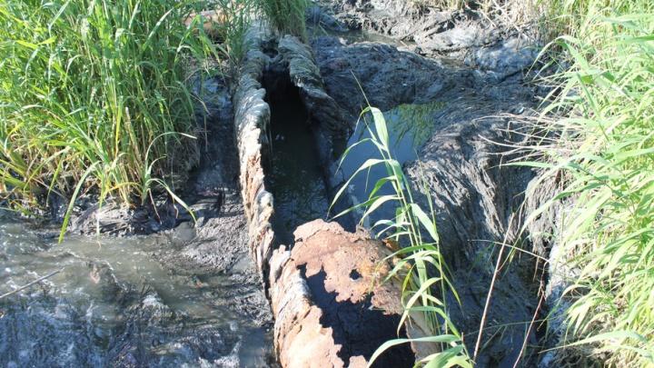 «Теперь это мертвая река»: количество вредных веществ в воде превышает норму в сто раз