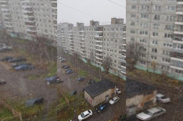 Пользователи публикуют фотографии снега в соцсетях