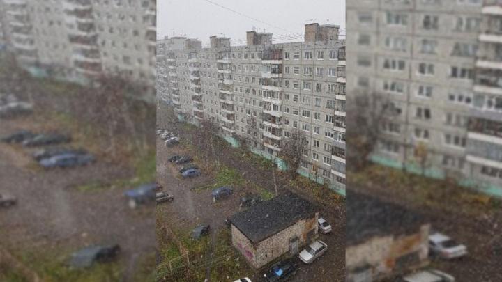 В Архангельске первый снег выпал с опозданием