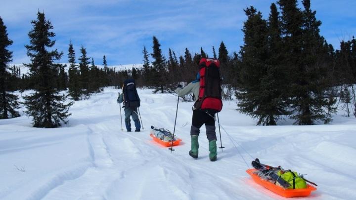 Пройдет через полюс недоступности: пермский путешественник Андрей Королев исследует Аляску