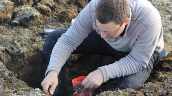 «Арктический плавучий университет» обнаружил остатки растительности юрского периода