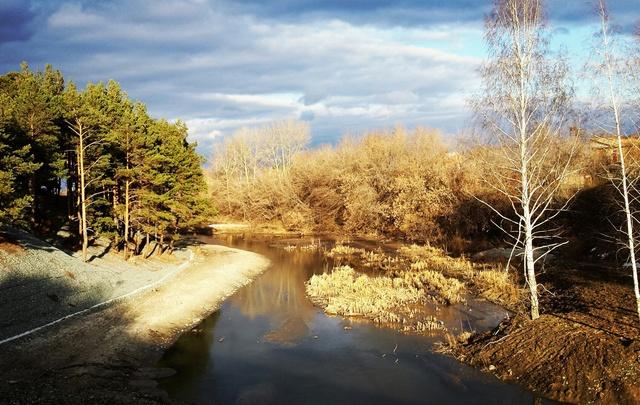 Благоустройство Гилевской рощи продолжится: там построят парковку и сделают спуск к озеру Кривое