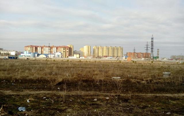 На субботнике тюменцы высадят в Ямальском микрорайоне сосны и березы