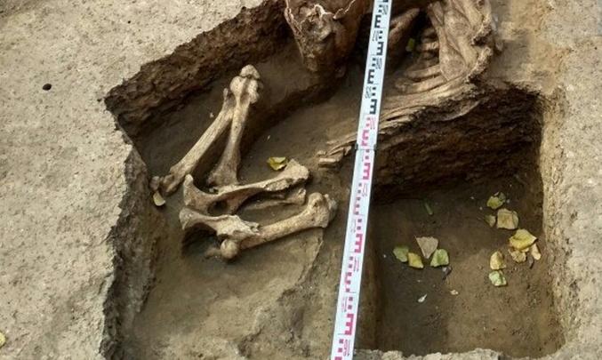 В Ростове на Станиславского обнаружили останки еще одного древнего коня