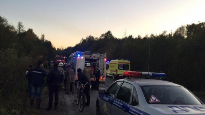 В дорожной аварии  в Приморском районе погибли двое детей