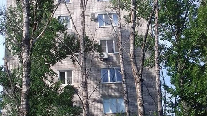 Сухие тополя угрожают жизни и здоровью жителей Кировского района