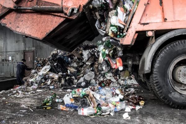 Убрать мусор Минприроды должен совместно с администрацией района