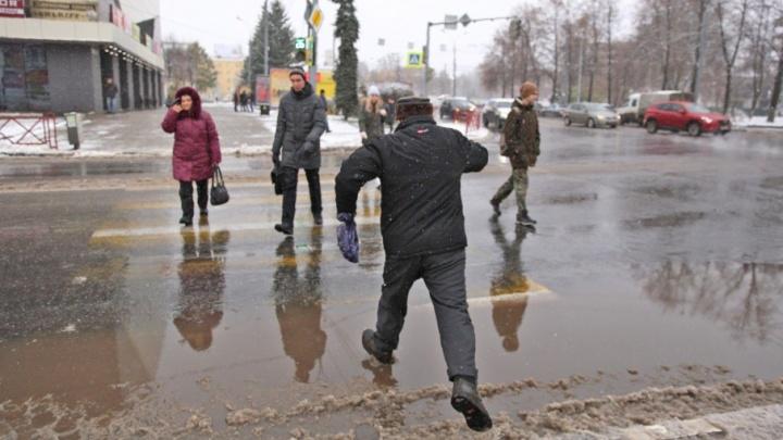 Дождливый Новый год! Синоптики опубликовали долгосрочный прогноз погоды