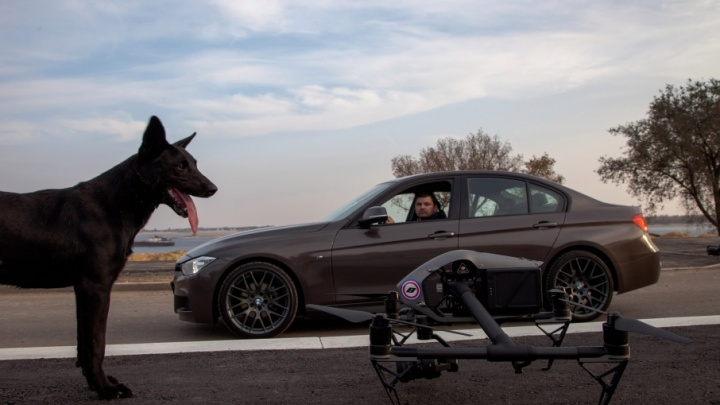 Черный пес вновь разыскал в Волгограде свой любимый коптер