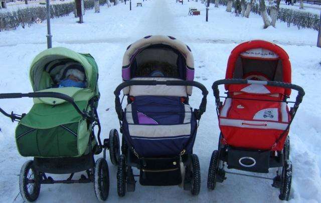 В Поморье снизилась рождаемость