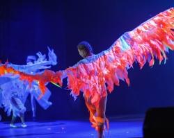Солнце Маори устроит невероятное шоу на вашем празднике