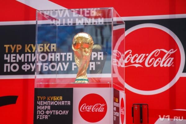 Волгоград стал 14-м городом во всероссийском турне кубка