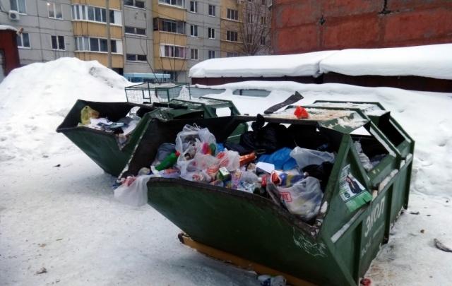 Нормативы на вывоз мусора в Прикамье разработают за 10 млн рублей