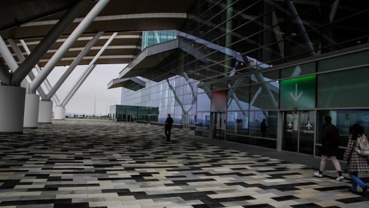 Рядом с ростовским аэропортом Платов построят жилой квартал, парки развлечений и логистический центр
