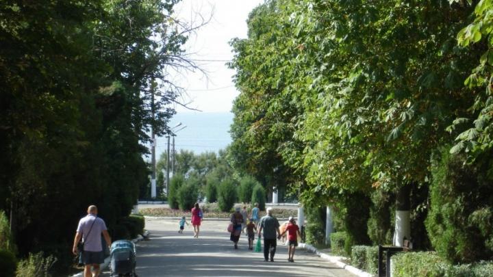 В Таганроге благоустроят Приморский парк за 113 миллионов рублей