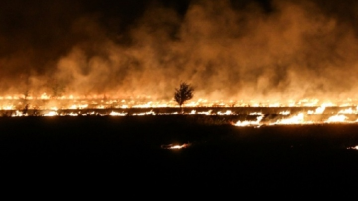 На трассах Волгоградской области против огня выставили поливомоечные машины