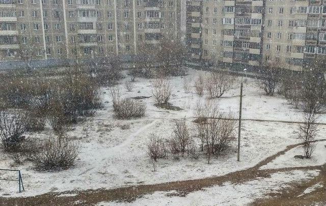 Воскресным апрельским утром в Челябинской области выпал снег