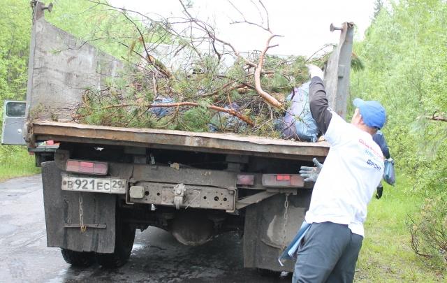 Активисты регионального ОНФ ликвидировали свалки вдоль дороги Новодвинск – Лесная Речка