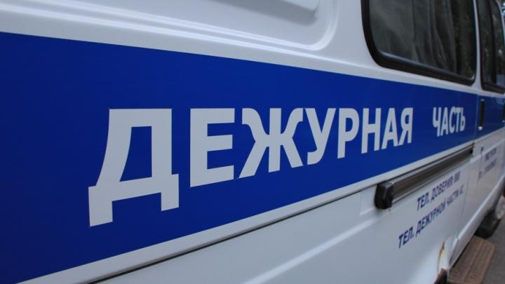 В Плесецком районе грабитель пытался отобрать у девушки рюкзак