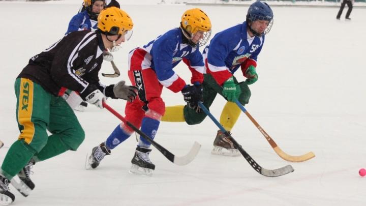 Чемпионат Поморья по хоккею с мячом стартовал в Архангельске