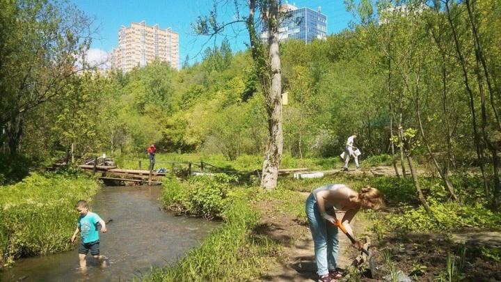 У реки в тени деревьев: в Перми пройдут бесплатные занятия йогой на берегу Егошихи