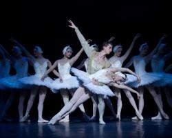 В Ростове проведут прямую трансляцию балета из Мариинского театра